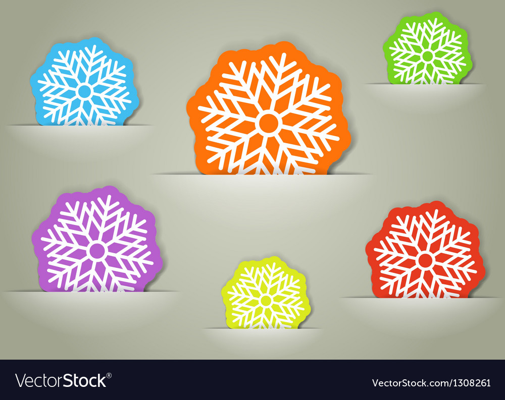 Color christmas flakes in a pocket collection vector image