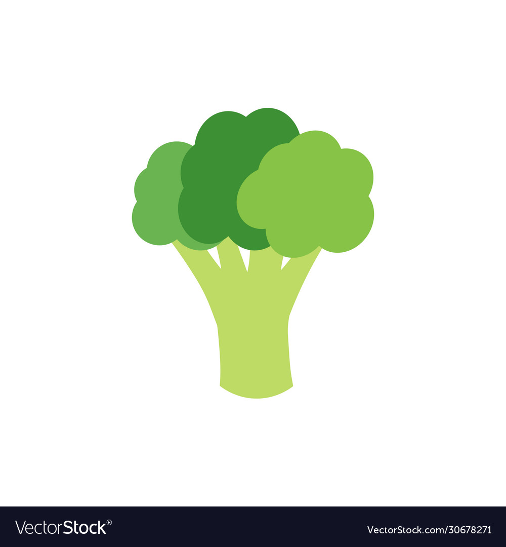 27+ Broccoli Vector Free
