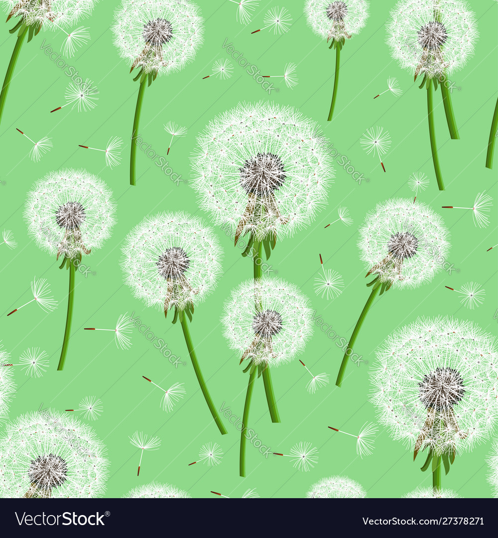 Green seamless background with dandelion blowing