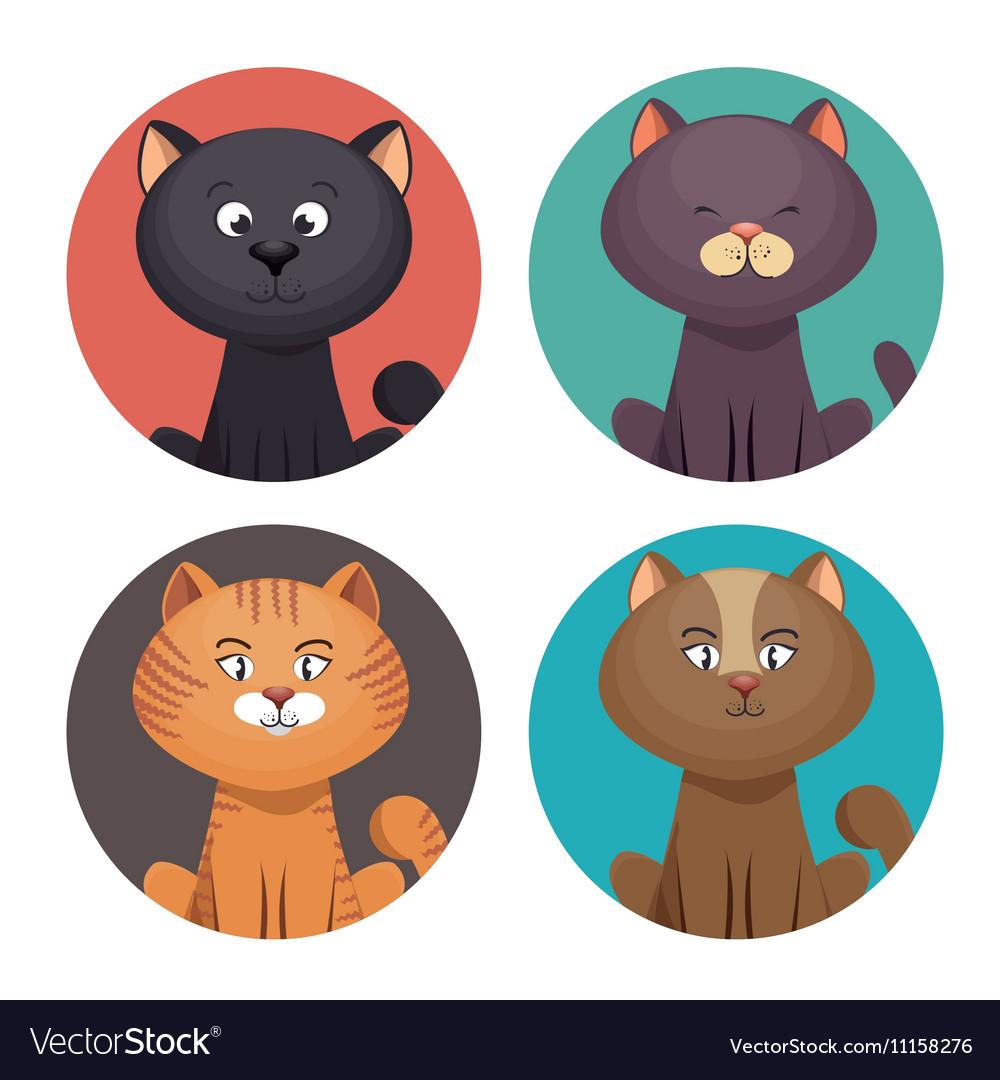 Cute set kittens pet shop