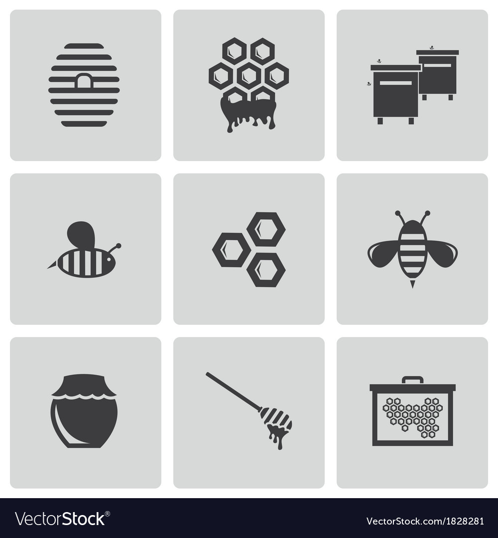 Black honey icons set vector image