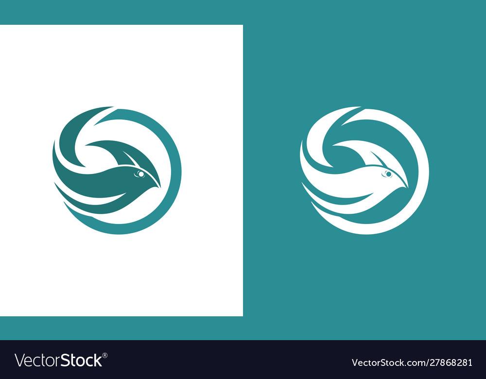 Circle fish abstract logo