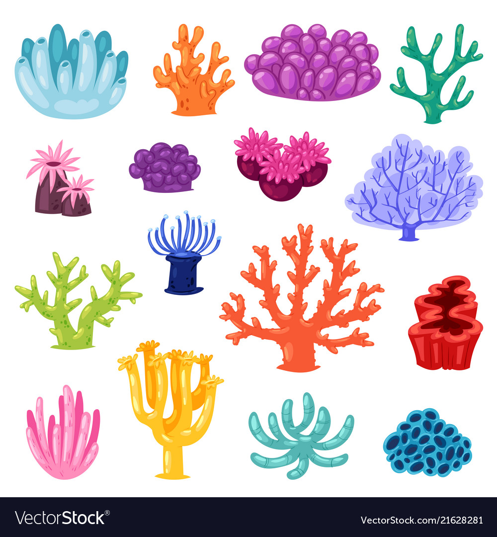 Coral sea coralline or exotic cooralreef