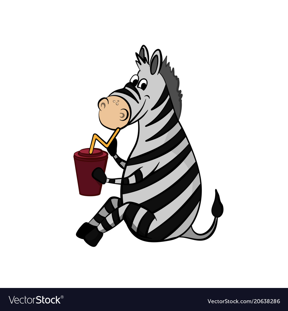 Animals of zoo zebra drinking from cup
