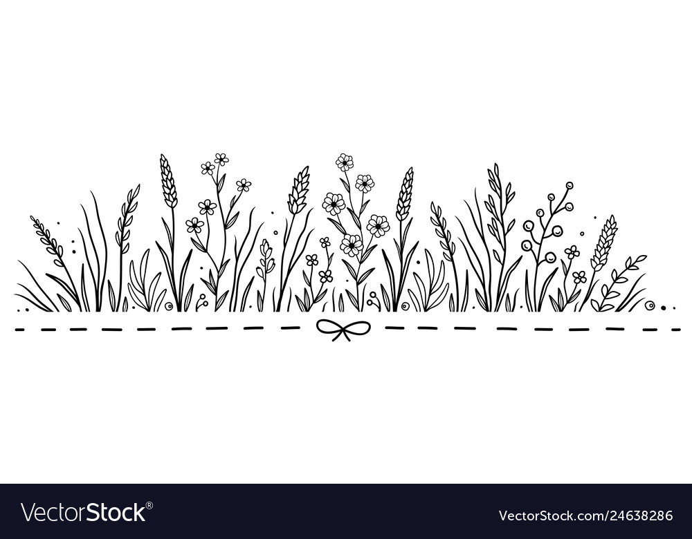 Hand drawn pattern with flowers and herbs