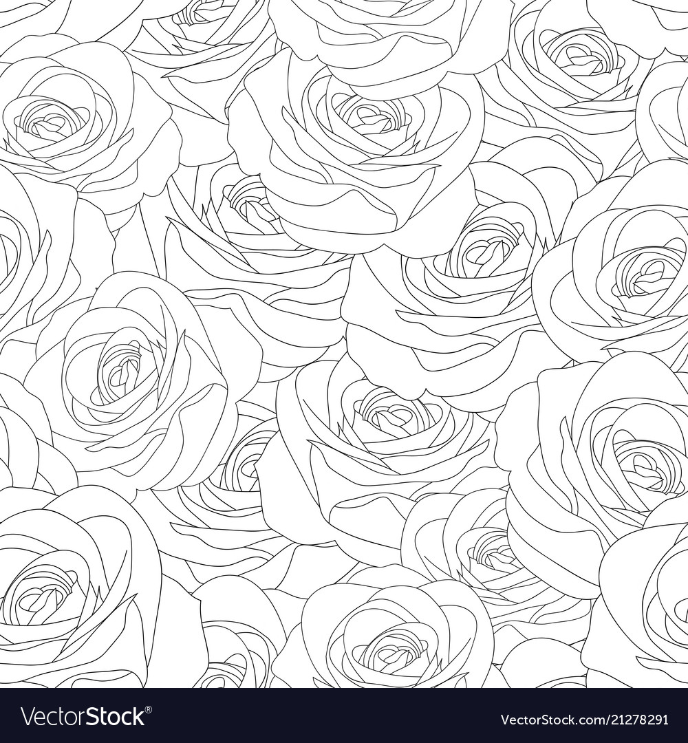 Beautiful rose - rosa outline seamless background