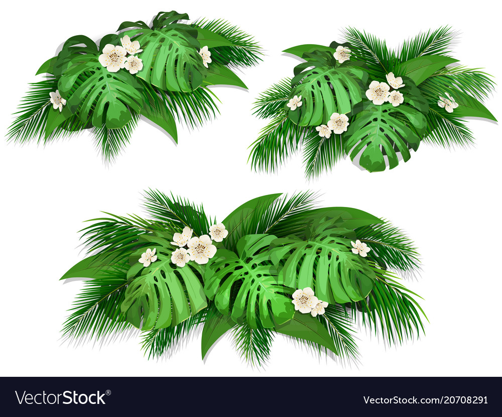 Summer composition with exotic leaves