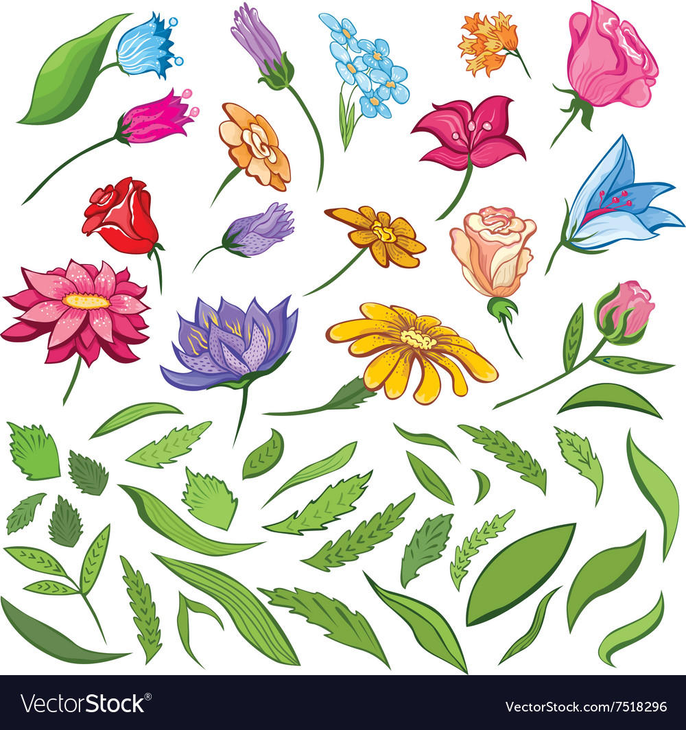 Spring Flowers and Leaves Set