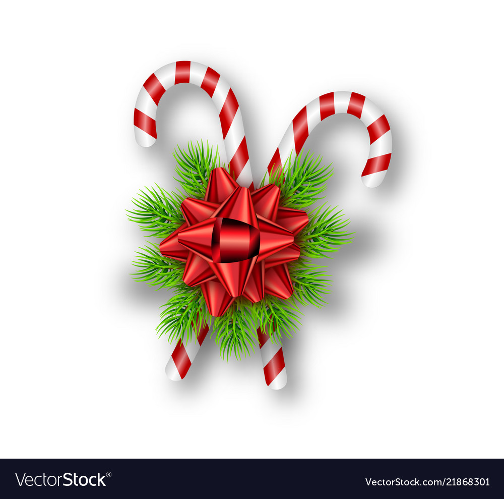 Holiday red bow fir tree branches candy canes