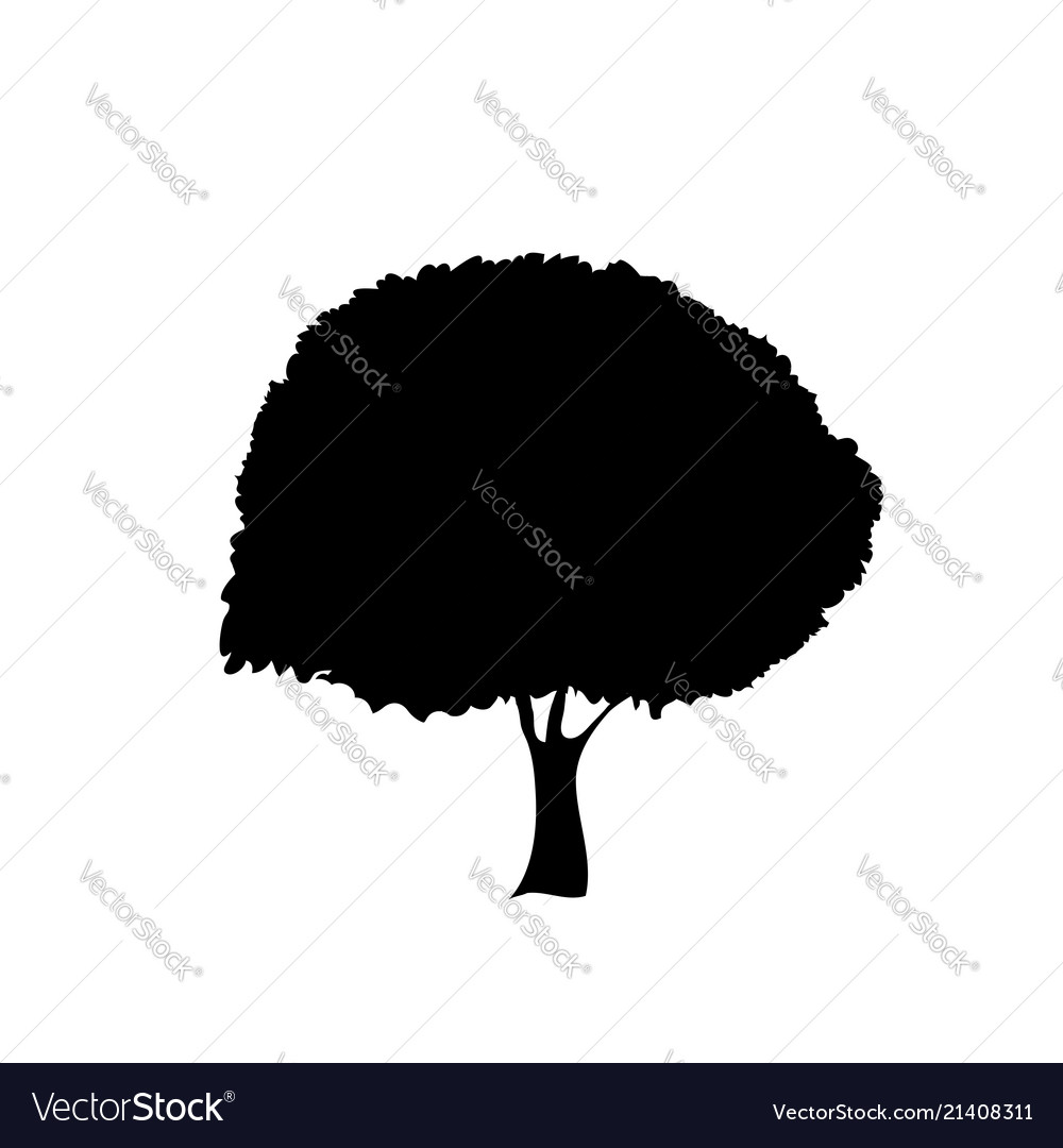 Black silhouette of foliar tree icon isolated on
