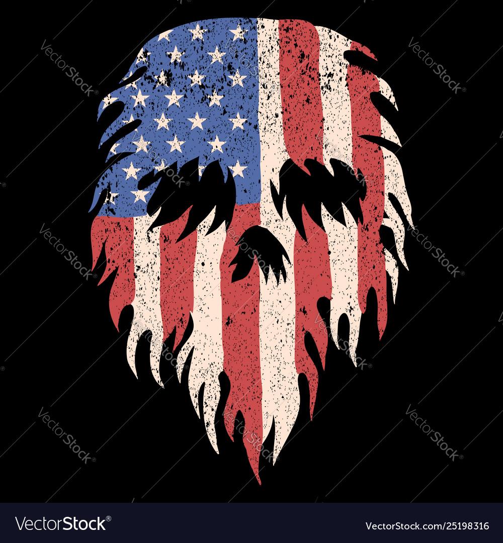 Skull usa torn flag