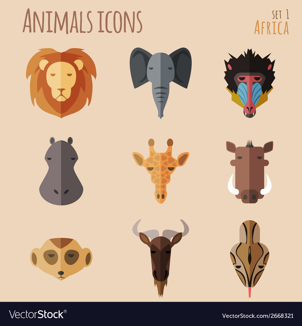 African Animal Portrait Set with Flat Design vector image