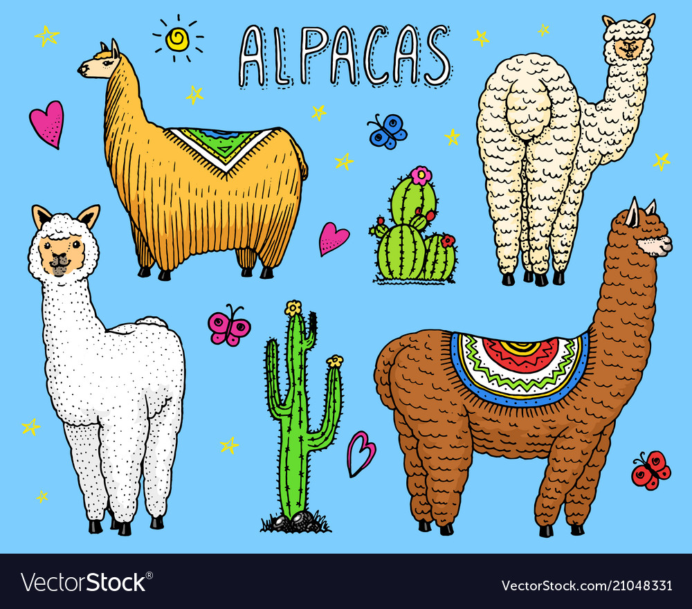 Set of cute alpaca llamas or wild guanaco on the