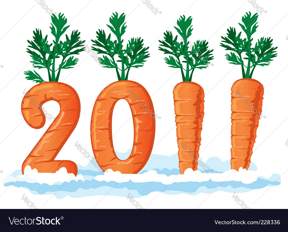 2011 figures from the carrots vector image