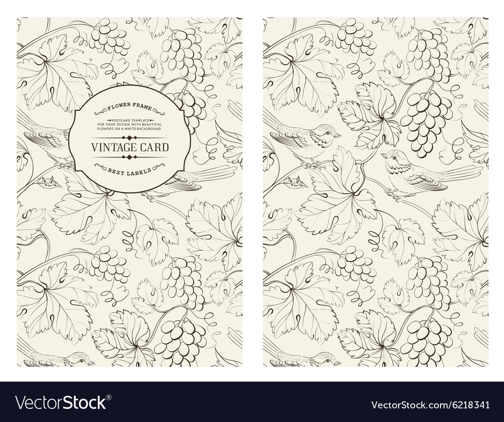 Book cover design vector image