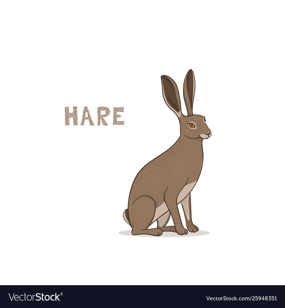 A cartoon hare isolated on a white background