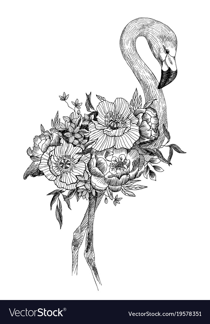 Flower Bird Drawing Flowers Healthy