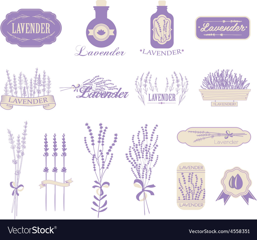 Vintage Lavender Background Aromatherapy And Spa Vector Image Find the best free stock images about lavender background. vectorstock