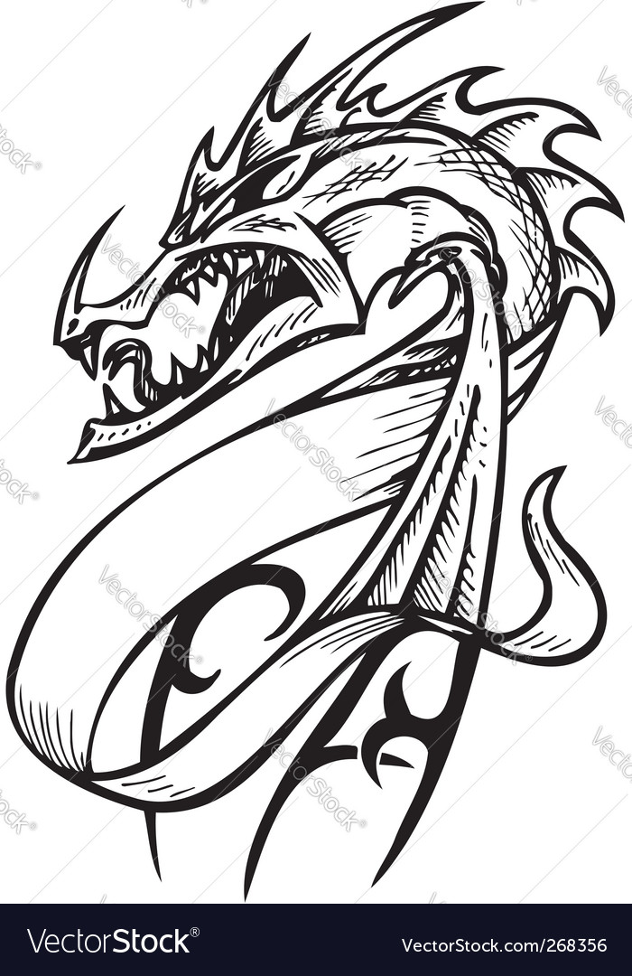 dragon template royalty free vector image vectorstock