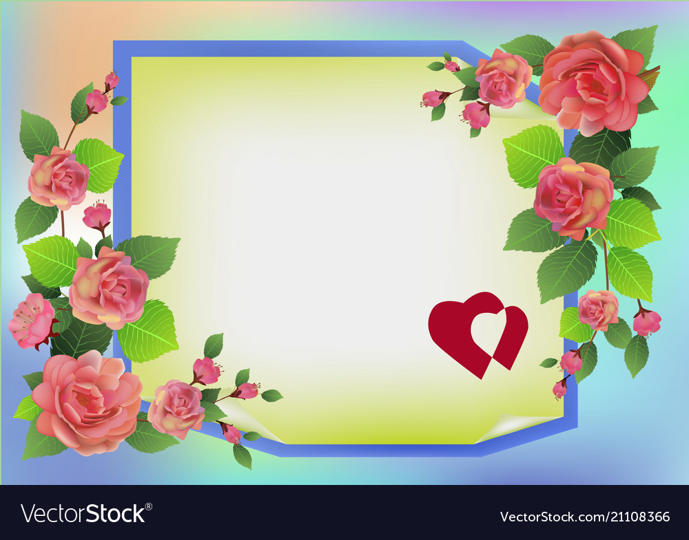 Greeting card roses and spring flowers on a vector image