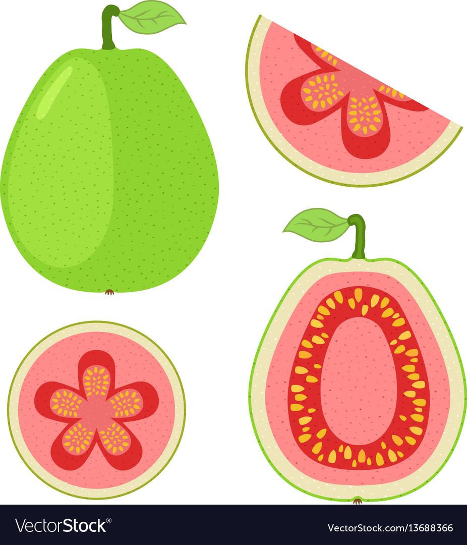 Slices of guava whole exotic fruit flat cartoon