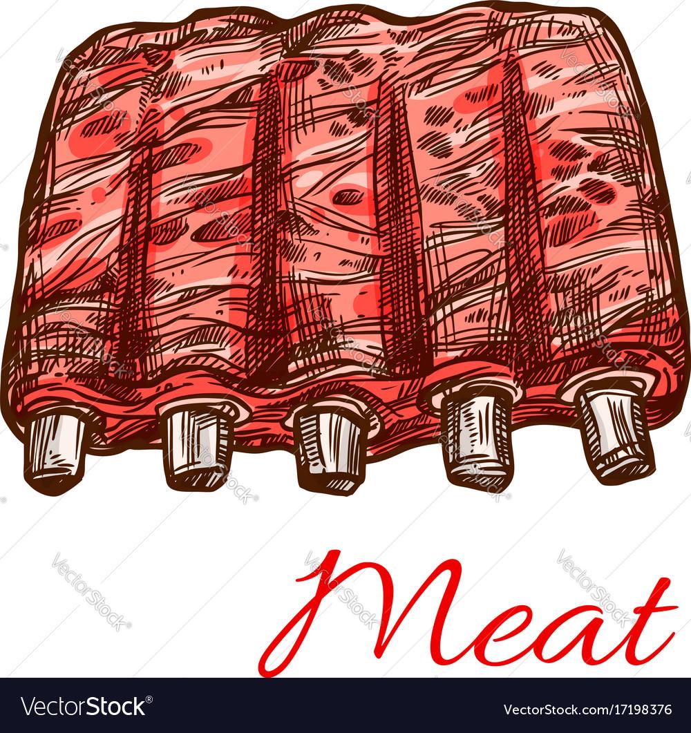 Pork or mutton fresh ribs meat sketch icon