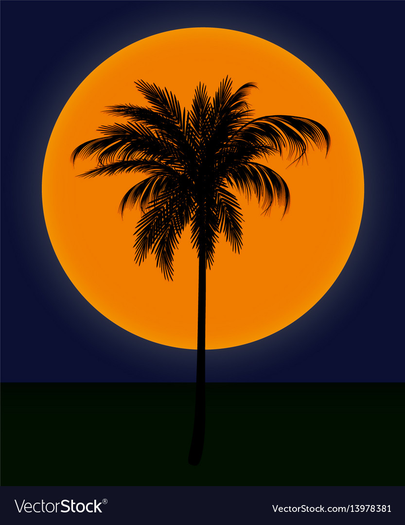 Silhouette of palm trees against the sun