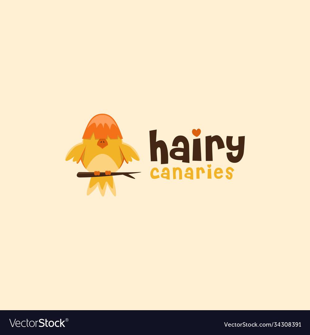 Hairy canary logo canary cartoon mascot