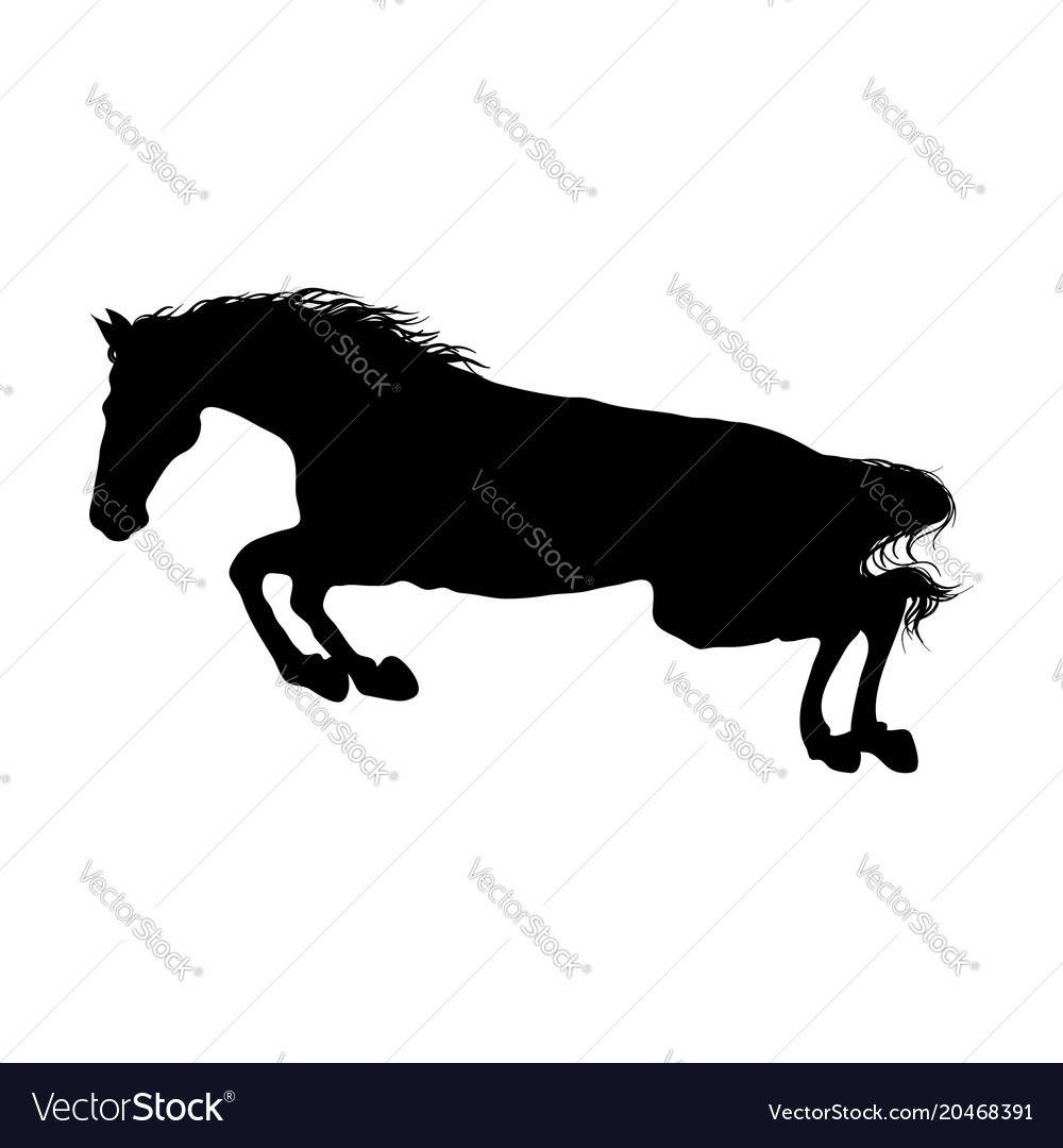 Running Horse Black Silhouette Royalty Free Vector Image