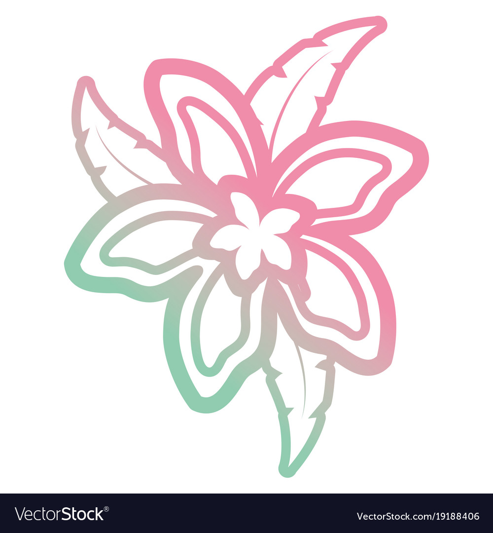 Beautiful Tropical Flowers Design Royalty Free Vector Image