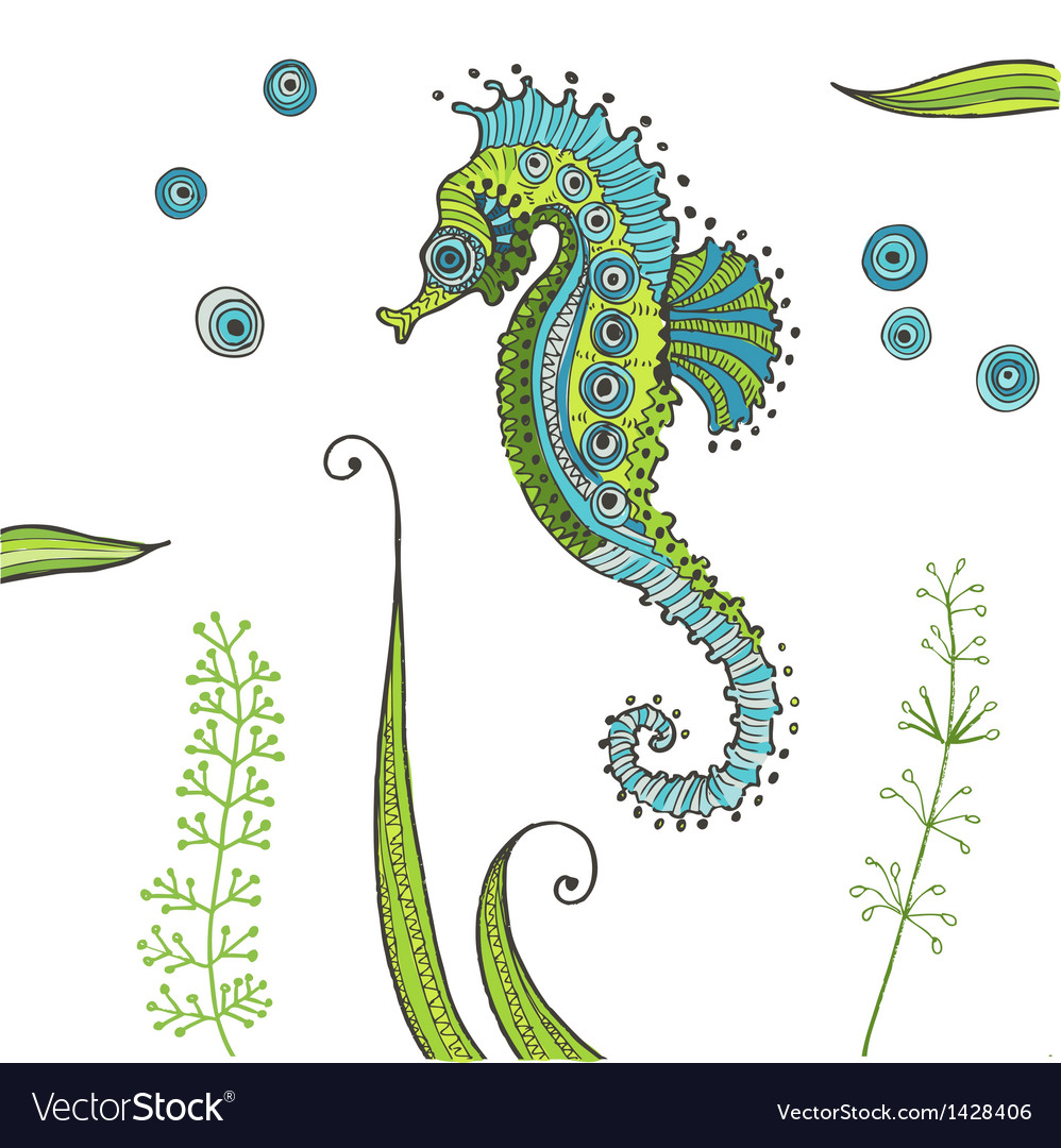 Tropical Seahorse background