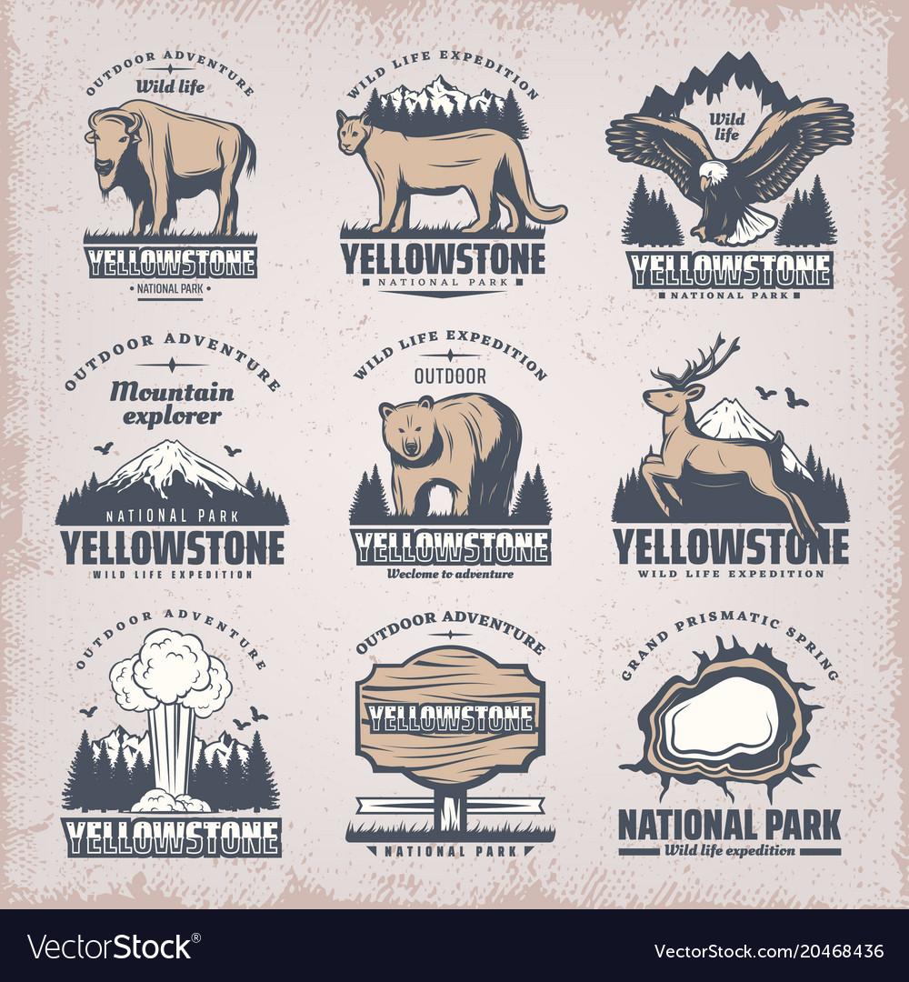 Vintage colored national park emblems set vector image