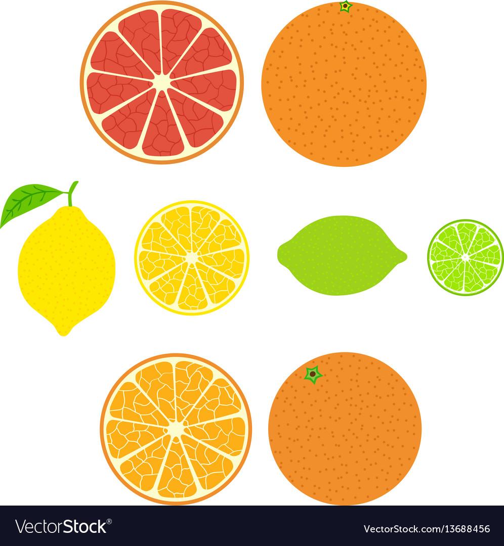 Collection of citrus slices of orange lemon lime