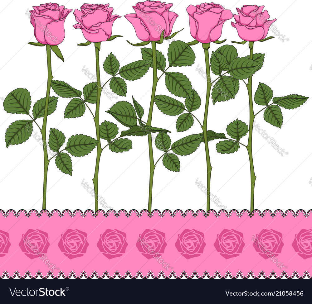 Set of color with pink roses