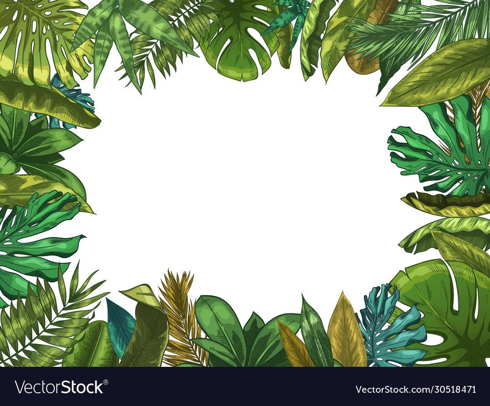 Green tropical leaves frame nature leaf border