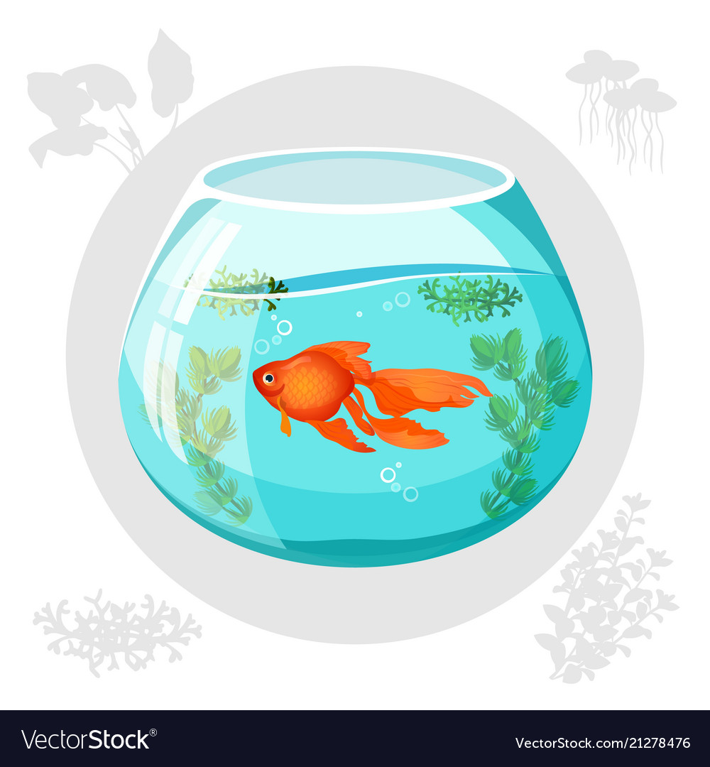 Goldfish Galaxy Bowl vector