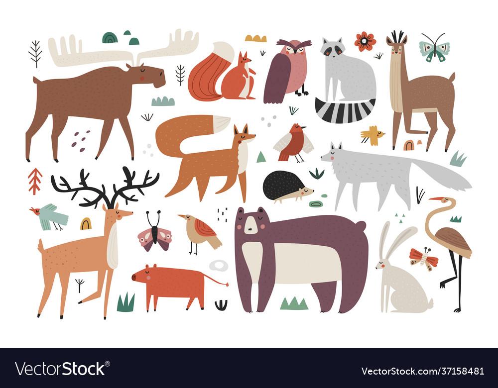 Collection hand drawn woodland animals