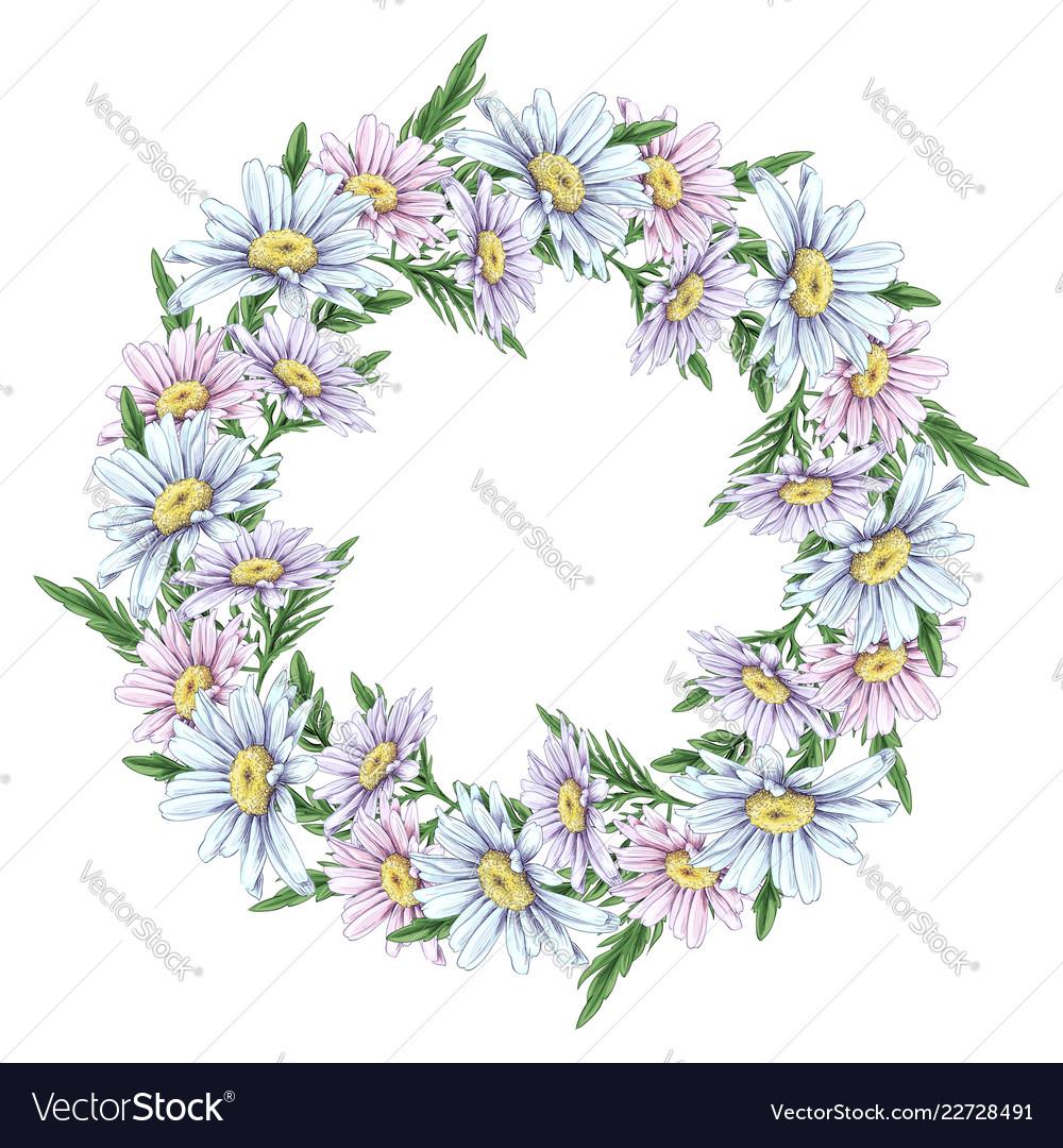 Beautiful delicate wreath daisies frame