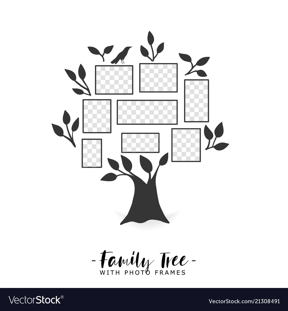 Family tree with photo frames Royalty Free Vector Image