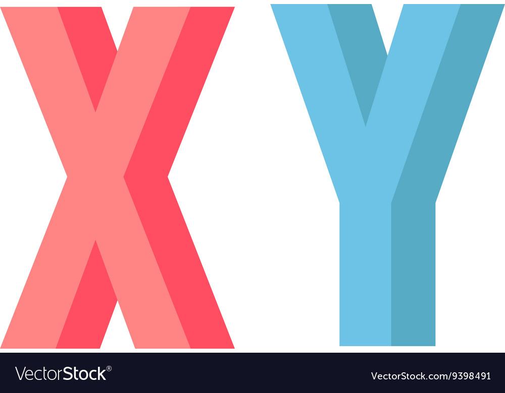 X Y chromosome vector image