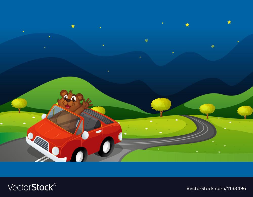 Bear and car