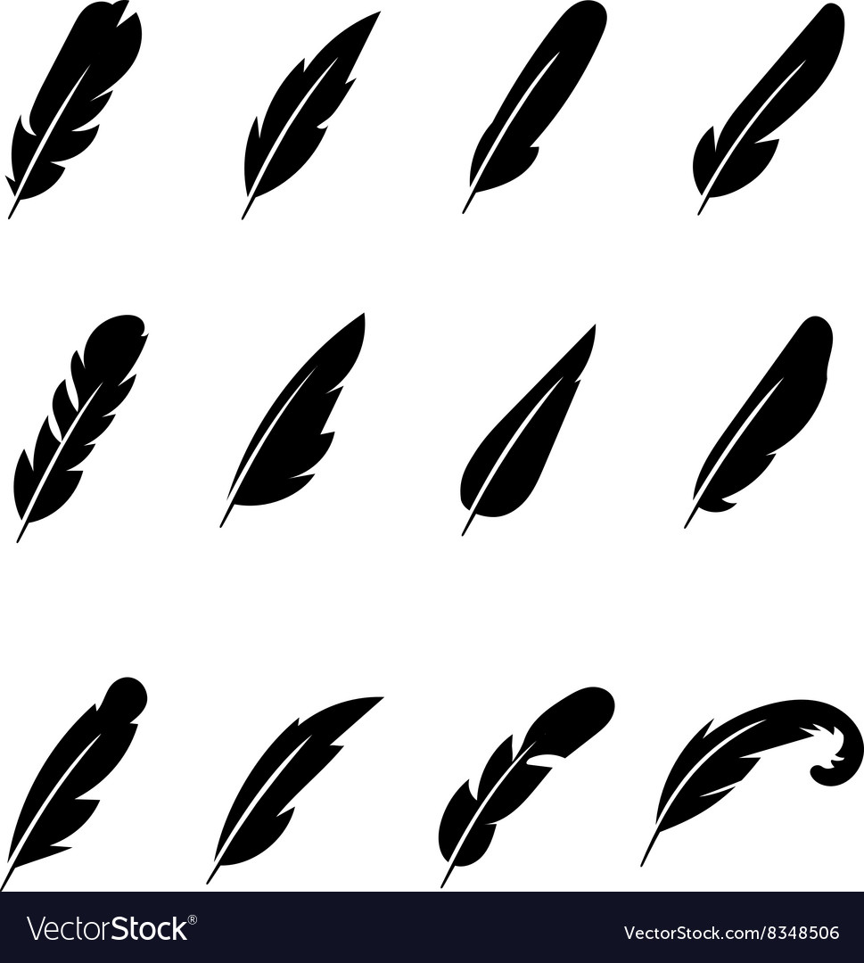 Feather black icons vector image