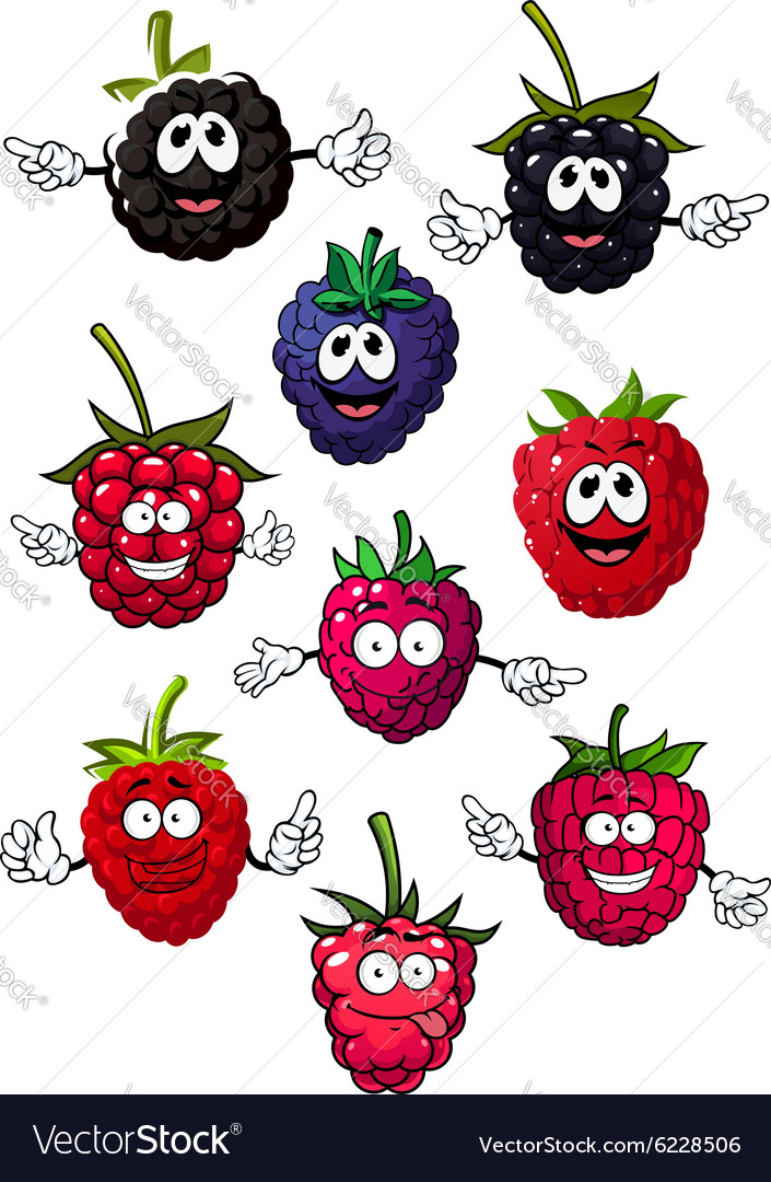 Funny raspberry blueberry and blackberry vector image