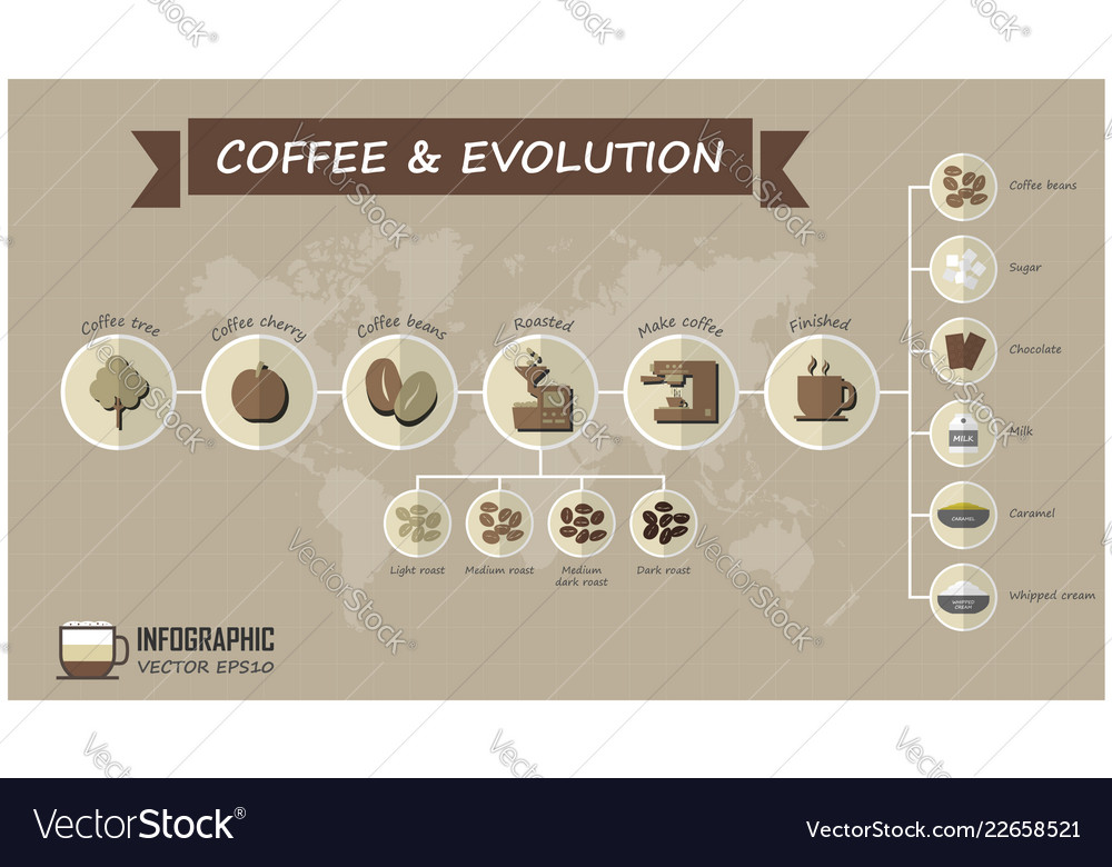 Evolution of coffee infographic elements and grid