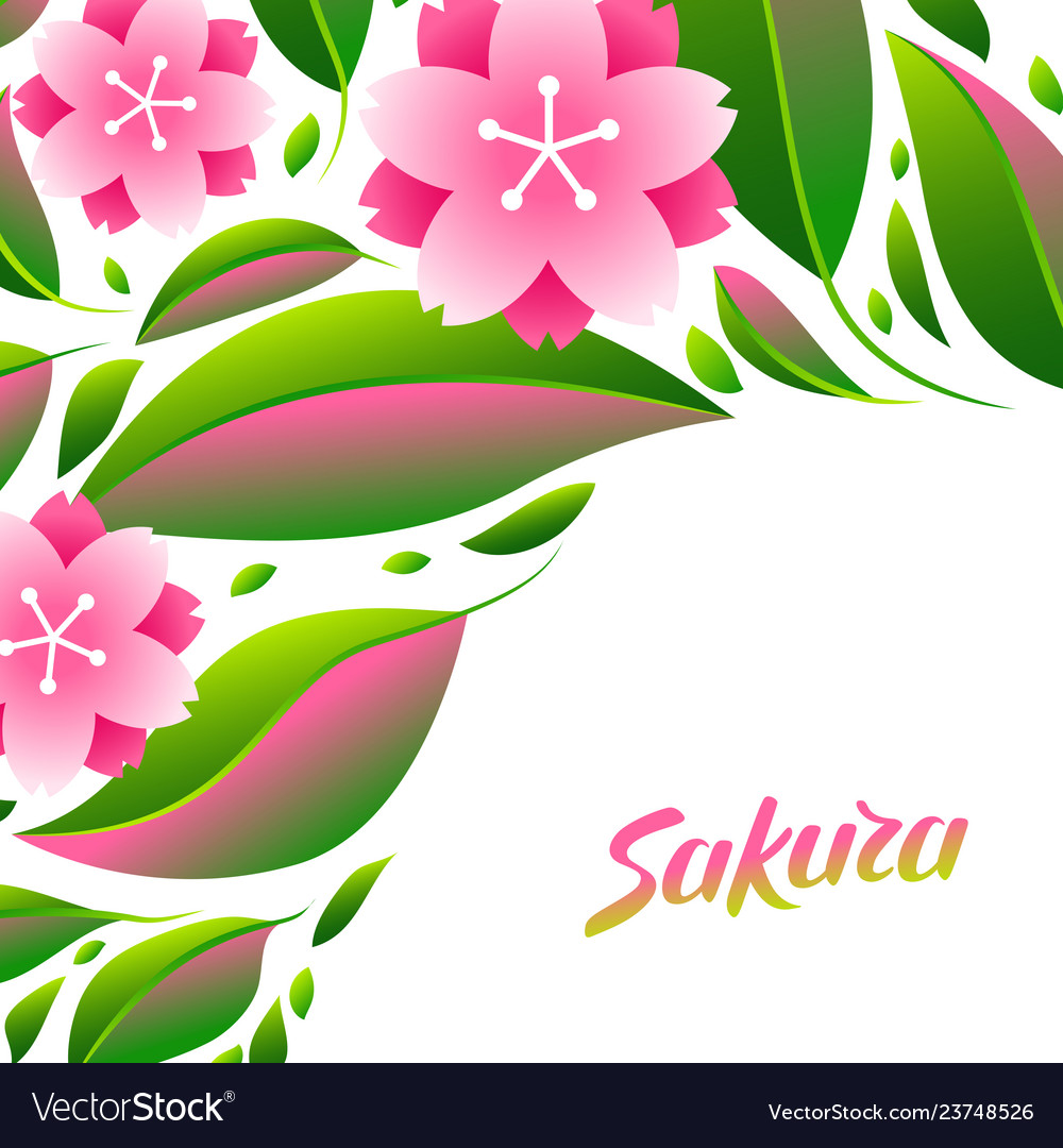 Background with sakura or cherry blossom
