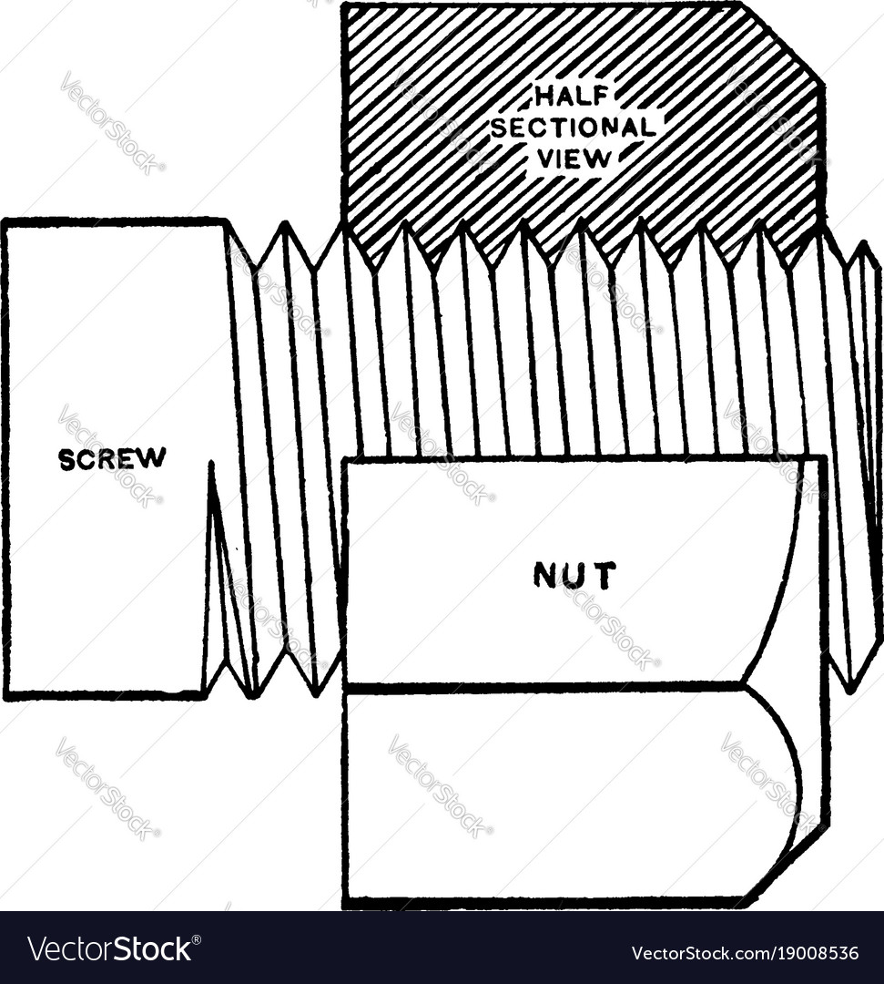 Screw and nut half sectional view vintage
