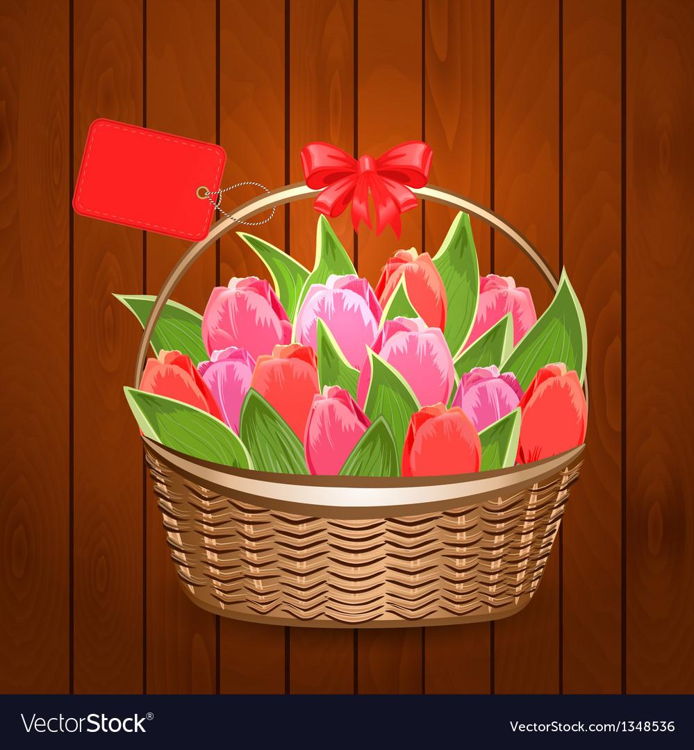 Tulip6 vector image