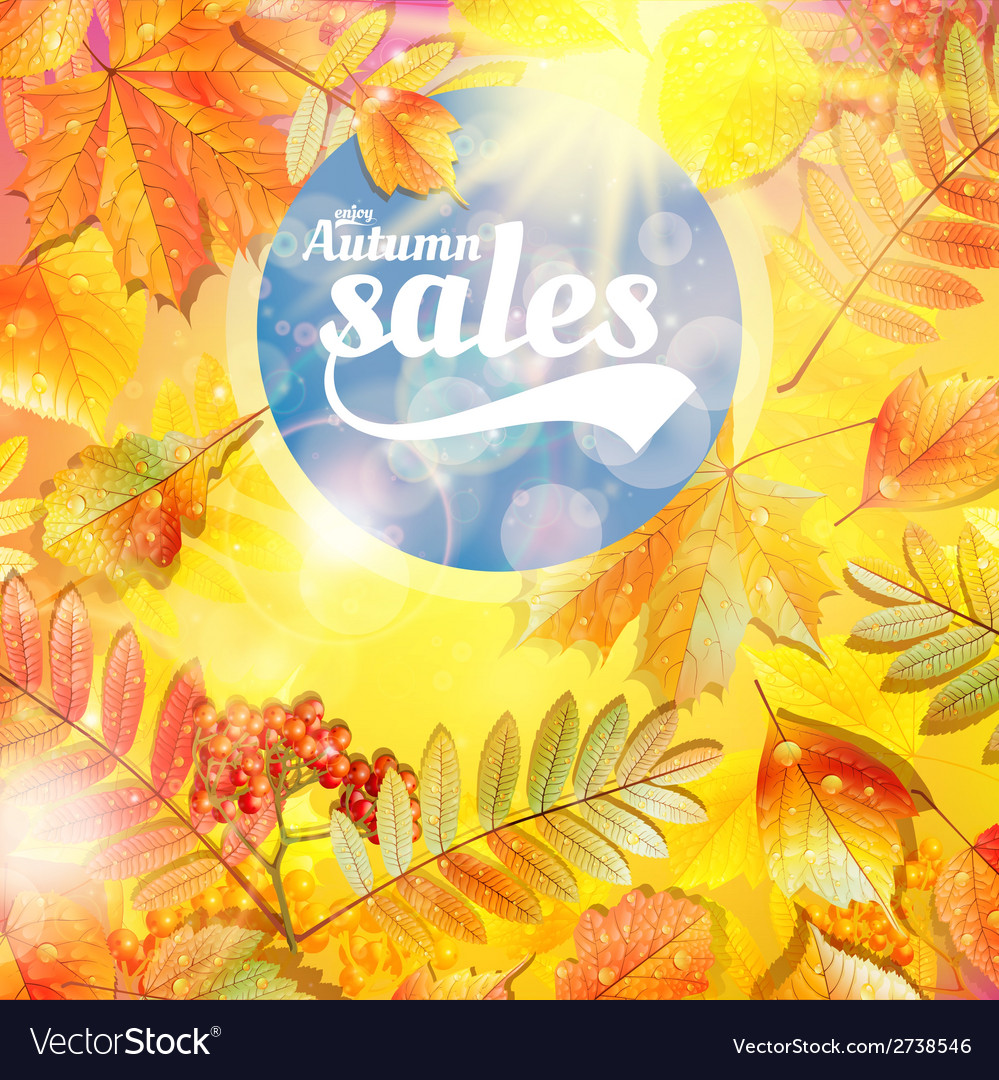 Autumn Sale Fall Yellow Leaves Nature Background Vector Image On Vectorstock