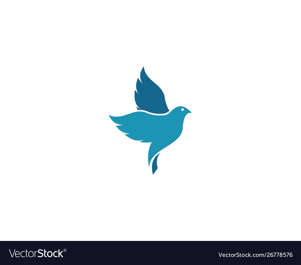 Dove bird logo template