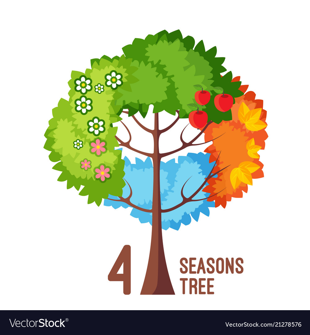 Four seasons tree isolated on white background